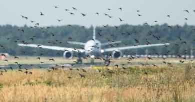 В двигатель самолета SCAT попали птицы